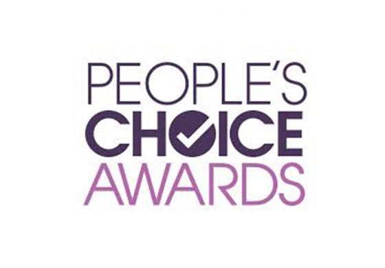 People s Choice Awards HermanMiller
